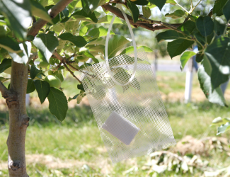 Rechargeable Soap Bags